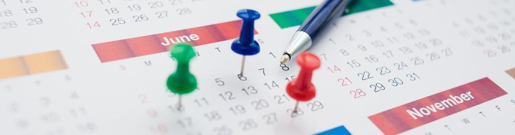 Year At a Glance Calendar